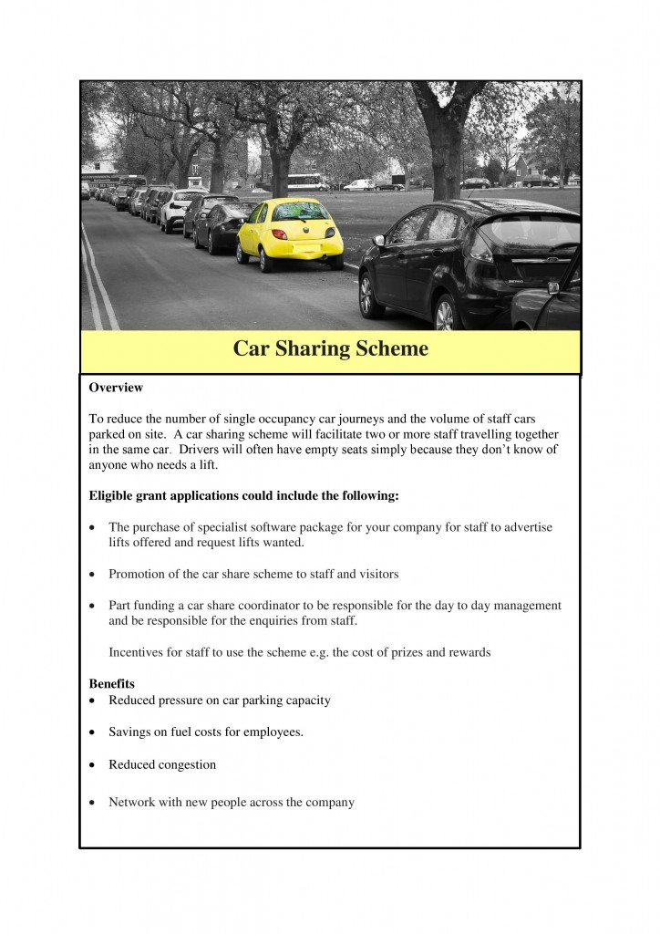Case studies car- Access to Employment-page-0