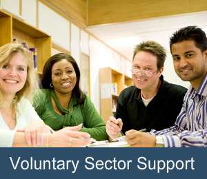 Voluntary Sector Support